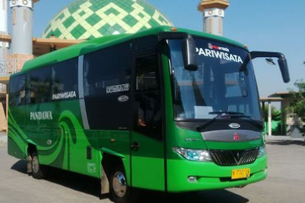 Bus Medium Pandawa 87