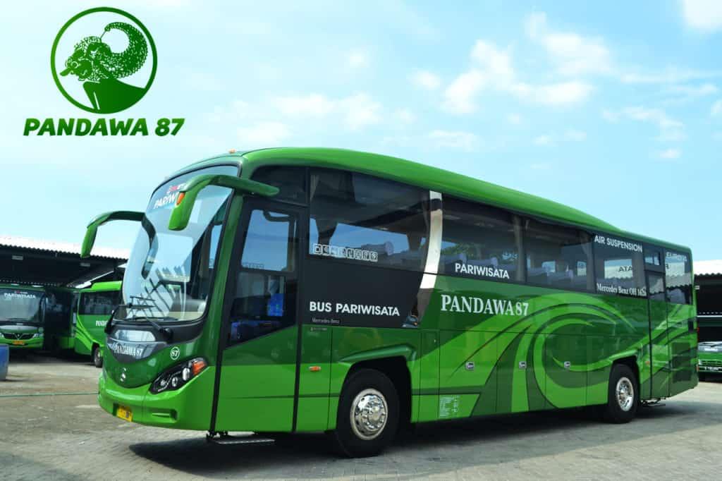 Bus HDD Pandawa 87