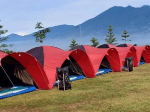 camping malang batu